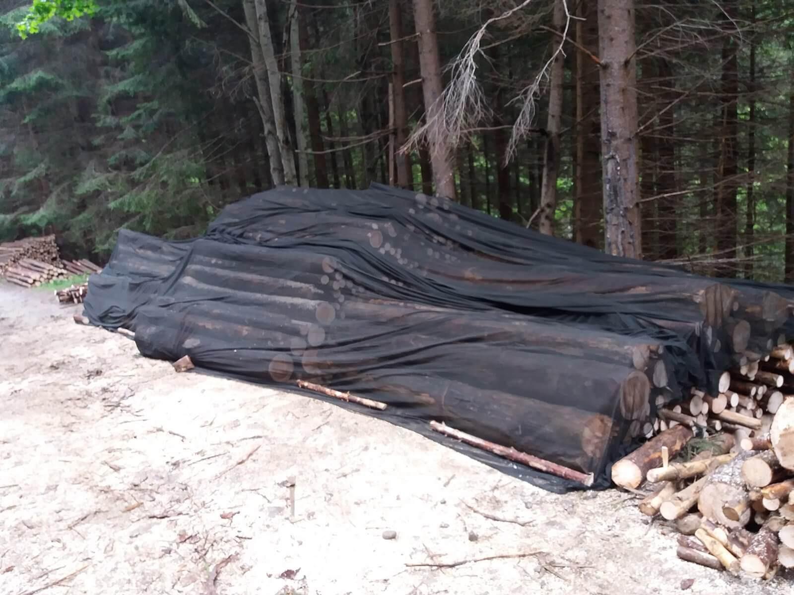 Prima plasa pentru protectia materialului lemnos de rasinoase impotriva gandacilor de scoarta
