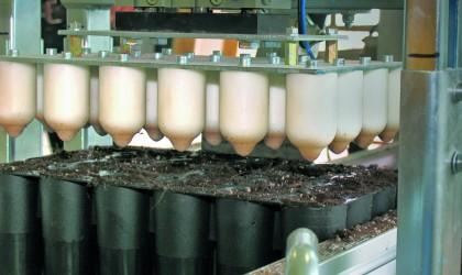 Dibbler - sistemul de producere a gaurilor de insamantare